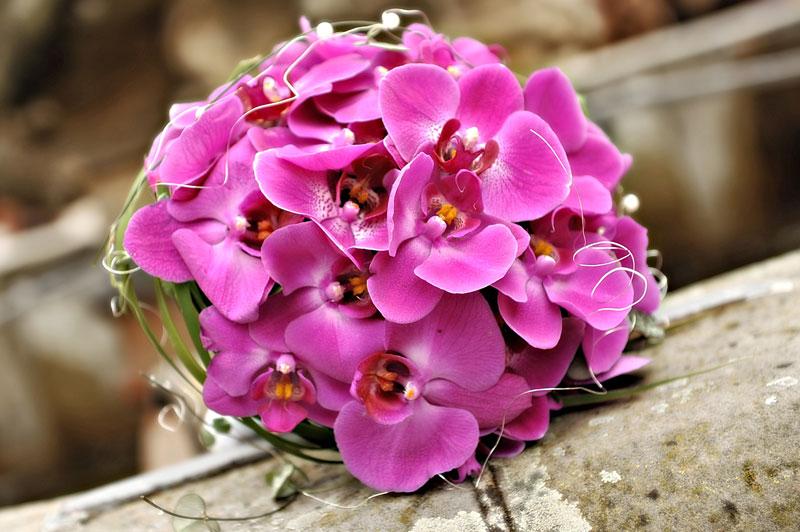 Ways to save money in your wedding keestone events - Tischdeko orchideen ...