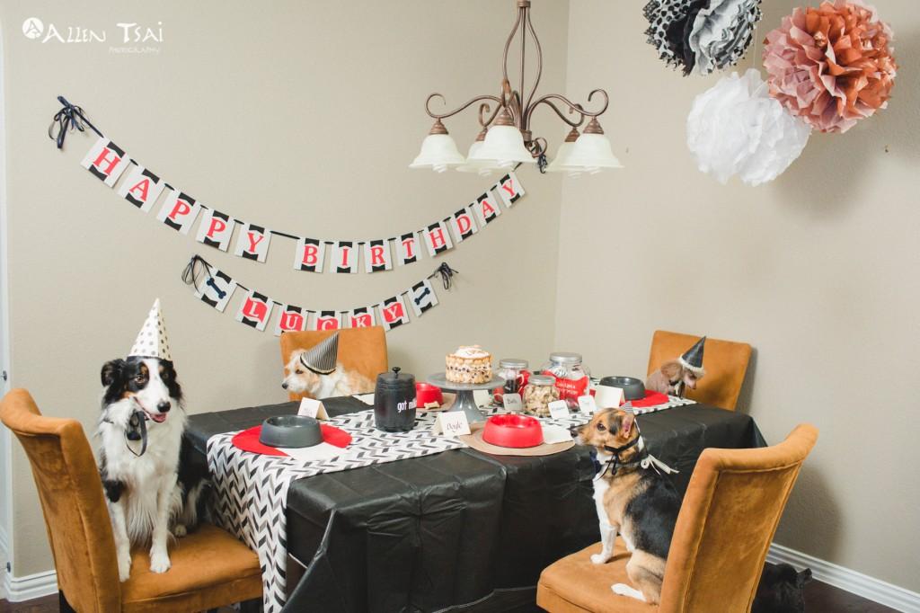 Doggie_Birthday_Party_Web_023